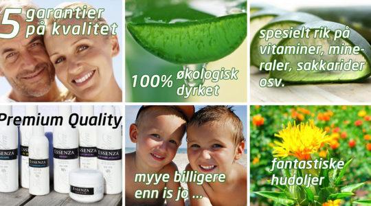 GARANTI Aloe Vera Premium Quality